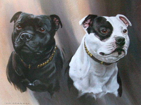 Staffordshire Bull Terriers by Vic Granger