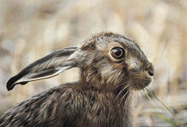 The Green Party - Hare by Denise Finney