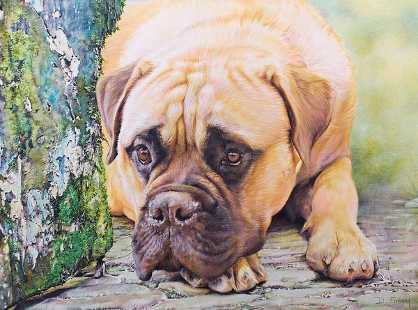 Poachers Foe - Bull Mastiff by Denise Finney